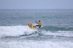 FOTO SURF 731